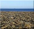 NU1443 : Bouldery beach east of Emmanuel Head : Week 38