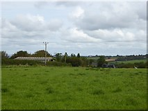 SX5596 : Grassland and some marsh vegetation at Eastington by David Smith