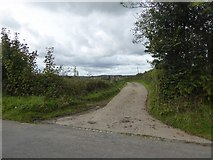 SX5596 : Track to Great Widefield farmhouse by David Smith