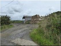 SS5400 : Bales and barn at Norleigh Barton by David Smith