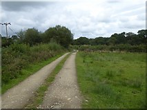 SS5500 : Track to Medland by David Smith