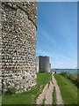 SU6204 : Portchester, wall and bastions by Mike Faherty