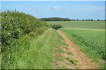 TL5335 : Harcamlow Way by N Chadwick