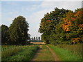 TF1606 : Farm track between Peakirk and Glinton in autumn by Paul Bryan