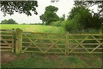 SP1971 : Field boundary near Baddesley Clinton by Derek Harper