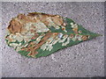 TL0452 : Horse Chestnut leaf by M J Richardson