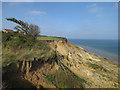 TG2838 : Cliffs at Trimingham by Hugh Venables