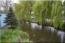 TQ0583 : Fray's River by N Chadwick