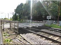 SK7964 : Level crossing at Carlton on Trent by Bob Harvey