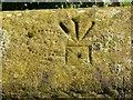 SK7874 : Pivot bench mark, bridge near Mill Farm, East Drayton by Alan Murray-Rust