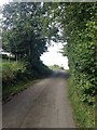 NY2635 : Part of the Cumbria Way by Dave Thompson