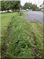 ST6167 : A modern defensive ditch by Neil Owen