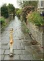 ST5874 : Tyne Path by Derek Harper