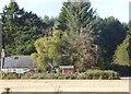NO7098 : Catterloch Croft by Stanley Howe