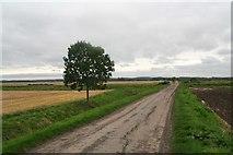 SE9914 : Carr Lane, Bonby, approaching Land Drain by Chris