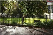 SX9164 : Upton Park through the railings by Derek Harper