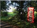 TG0928 : Phone box on Wiggets Lane by Hugh Venables