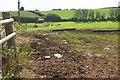 SX8986 : Valley near Clapham by Derek Harper