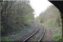 SX4563 : Tamar Valley Line by N Chadwick
