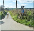 SX2756 : Road to Cleese Farm by N Chadwick