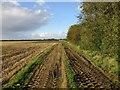 TA1452 : Farm track off Dunnington Lane by Jonathan Thacker