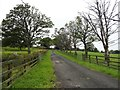 NZ0449 : Entrance drive to Calf Hall by Robert Graham