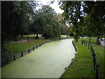 TQ3296 : New River, Enfield (1) by Richard Vince