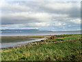 C5822 : Lough Foyle by David Dixon