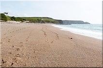 SW6522 : Fishing Cove Beach, Gunwalloe, Cornwall by Derek Voller