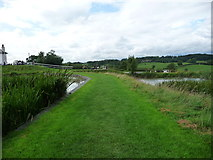 SP6989 : The bank between the top two side ponds at Foxton by Christine Johnstone