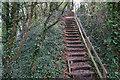 ST5476 : Flight of steps on the Severn Way by Bill Boaden