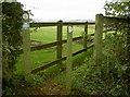 ST6462 : Permissive path to Wick Farm by Neil Owen
