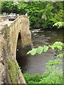 SJ2642 : The river Dee at Pont Cysylltau by Stephen Craven