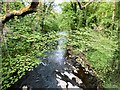 SJ9688 : River Goyt by Gerald England