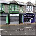 SS9992 : Purple Leek in Tonypandy by Jaggery