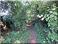 SJ3079 : Public Footpath past Cherry Farm by Jeff Buck