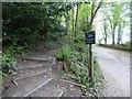 SJ9688 : Public Footpath to Strines Road by Gerald England