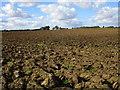 TA1554 : Ploughed field near Skipsea Brough by Jonathan Thacker