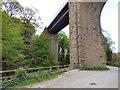 SJ9687 : Goyt Cliff Viaduct by Gerald England