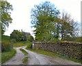 SJ9687 : Strawberry Hill by Gerald England