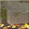 NT2474 : Bench mark, Queen Street Gardens railings by Alan Murray-Rust