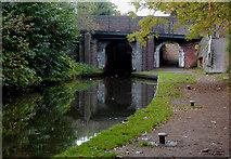 SJ9214 : Canal at Penkridge Bridge in Staffordshire by Roger  Kidd