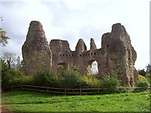 SU7251 : Ruins of Odiham Castle by Len Williams