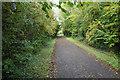 ST6866 : Bristol and Bath Railway Path by Bill Boaden