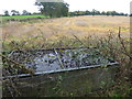 TQ2998 : Old drinking trough next to The London LOOP by Marathon