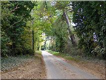 TR3153 : Updown Road by Robin Webster