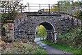 NO0440 : Railway bridge, Birnam Quarry by Jim Barton
