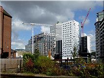 SP0686 : City redevelopment in Birmingham by Roger  Kidd