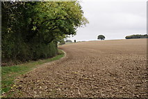TQ1328 : Footpath Across the Field by Peter Trimming