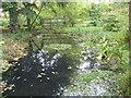 TQ2997 : The Japanese water garden in Trent Park by Marathon